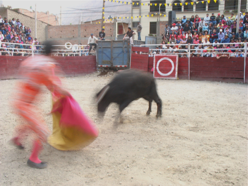 movement at local bull fight at Churin, Peru
