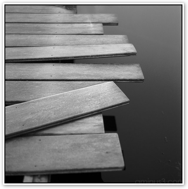 Wood & Water, calm interesting bw photo by richo