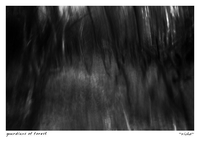 Abstract landscape of the forest, trees as warrior