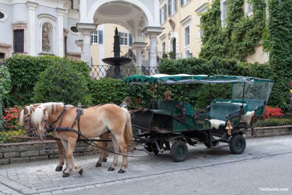 Horse Carriage in Sankt Wolfgang im Salzkammergut