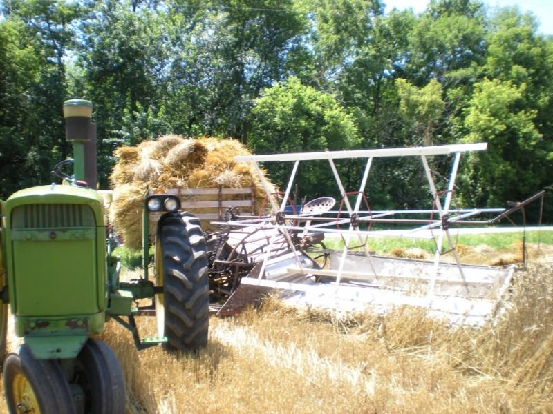 Binding Wheat