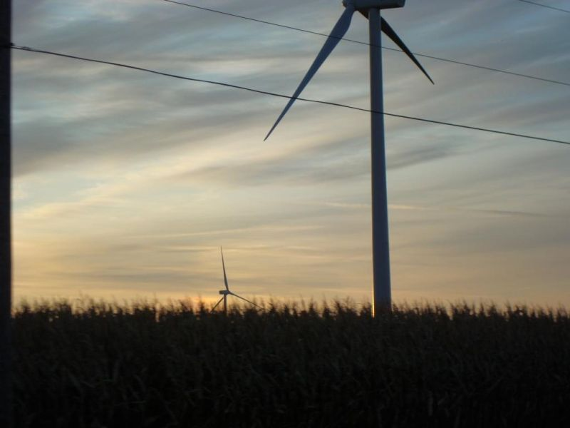 Windmills at Dawn