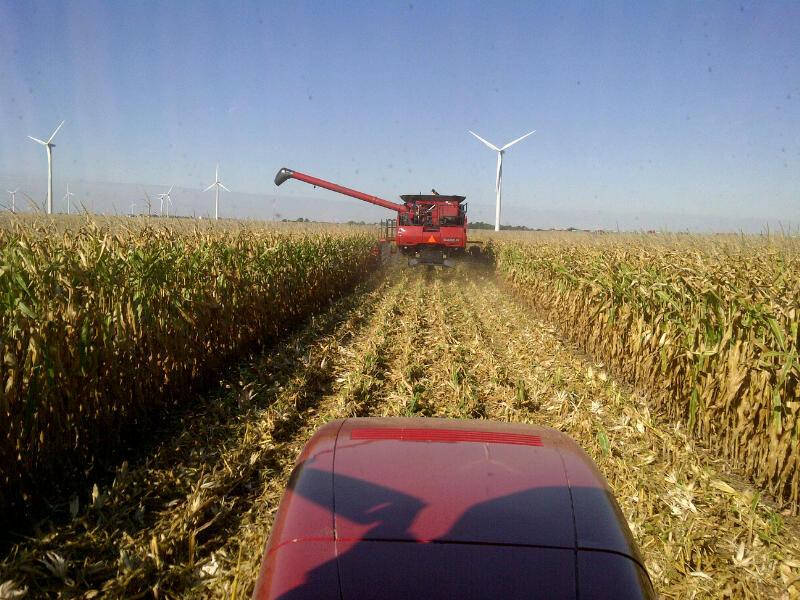 Harvest Has Begun