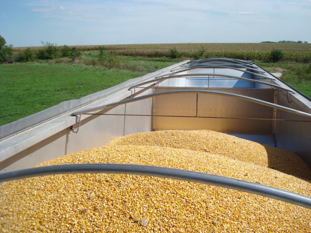 Load of Corn