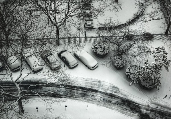 Cars parked after a snow storm
