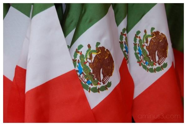 Mexican Flag!