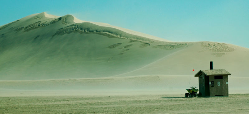 Out in the Dunes....