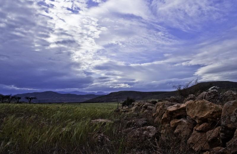 STONES.LOS  ALBARICOQUES - 2