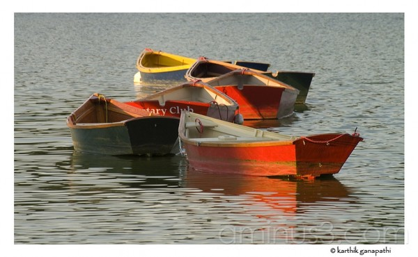 Rowboats on Hoyt Lake