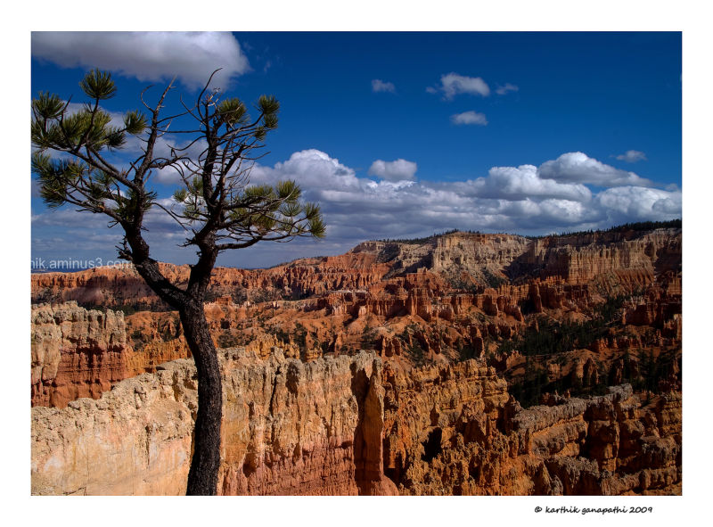 Bryce canyon, rim trail