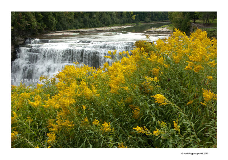 Letchworth middle falls in bloom