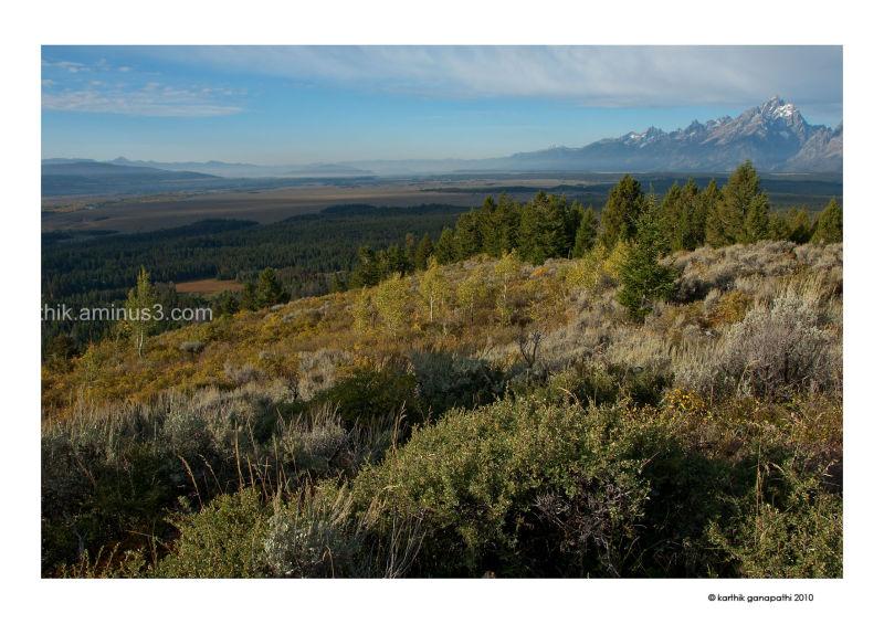 Signal Mountain, Grand Teton, GTNP