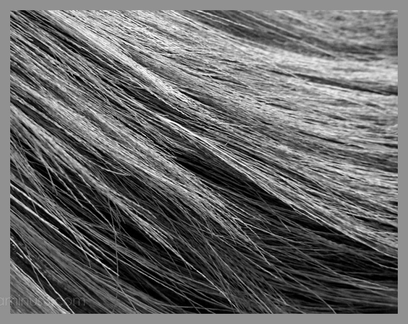 close-up view of a broom