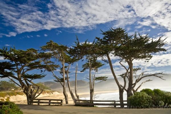 Carmel River Beach, CA