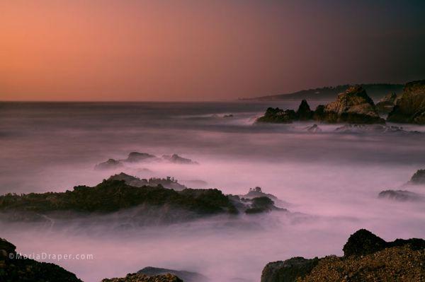 Point Lobos State Reserve, Carmel, California