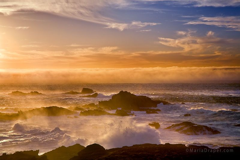 Misty Evening at Sea Lion Cove, Point Lobos