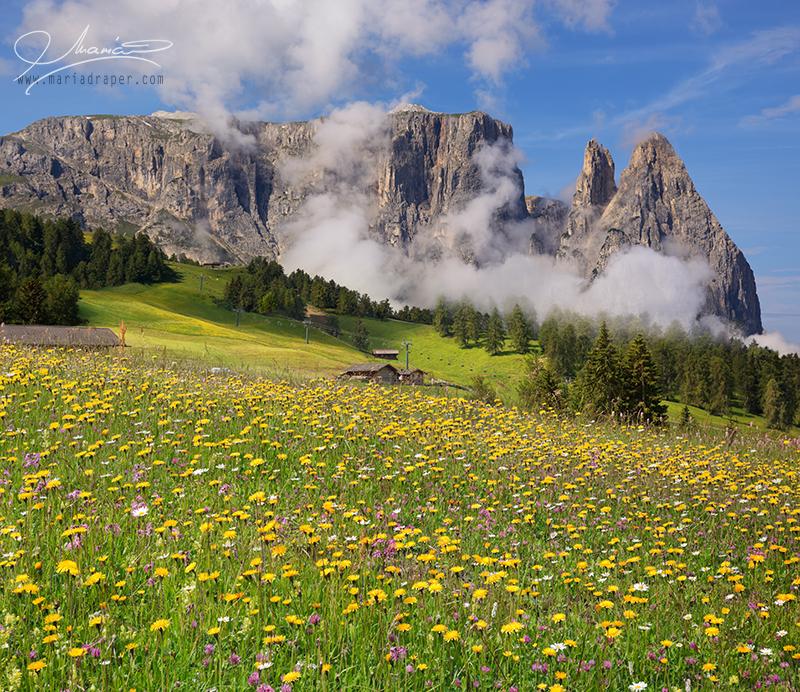 Alpe di Siusi, Italy