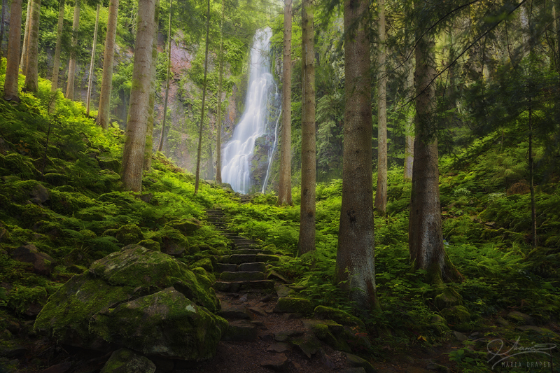 A waterfall in the Black Forest region of Germany