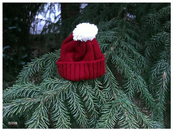 festive dressed