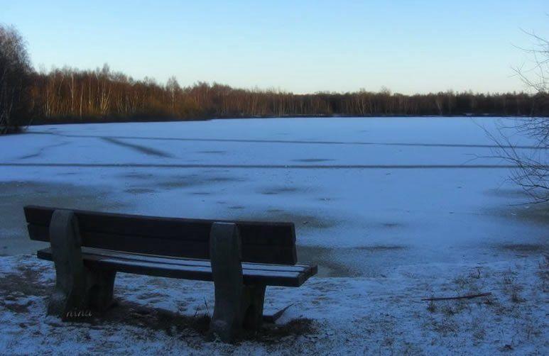 icy lake II