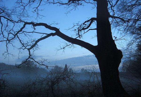 waft of mist