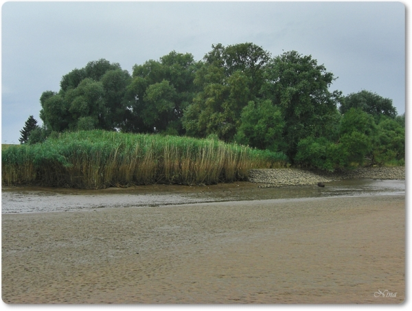low water at the Elbe River