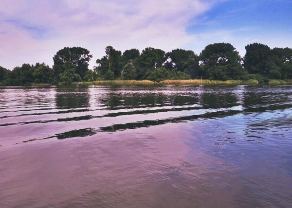 elbe-river