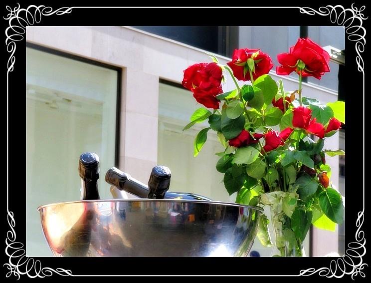 stylish roses