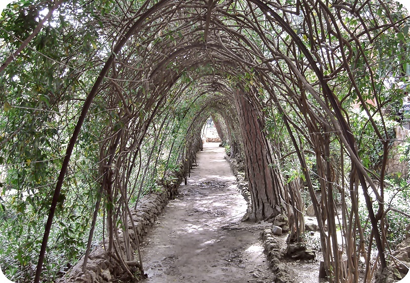 arched path