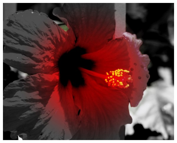 a highly edited flower something new