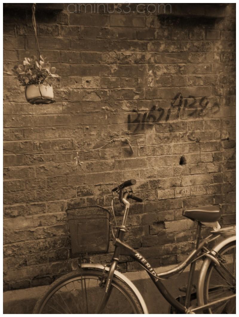 bike, shanghai