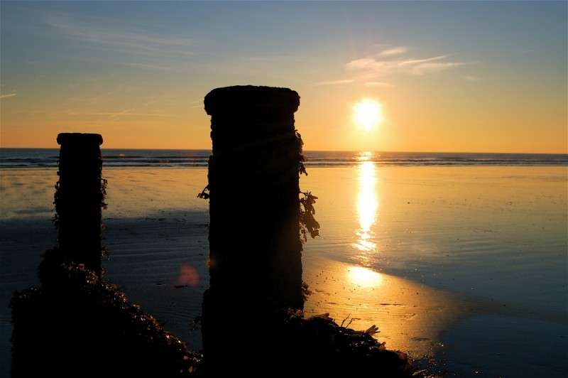 East Wittering Sillouettes