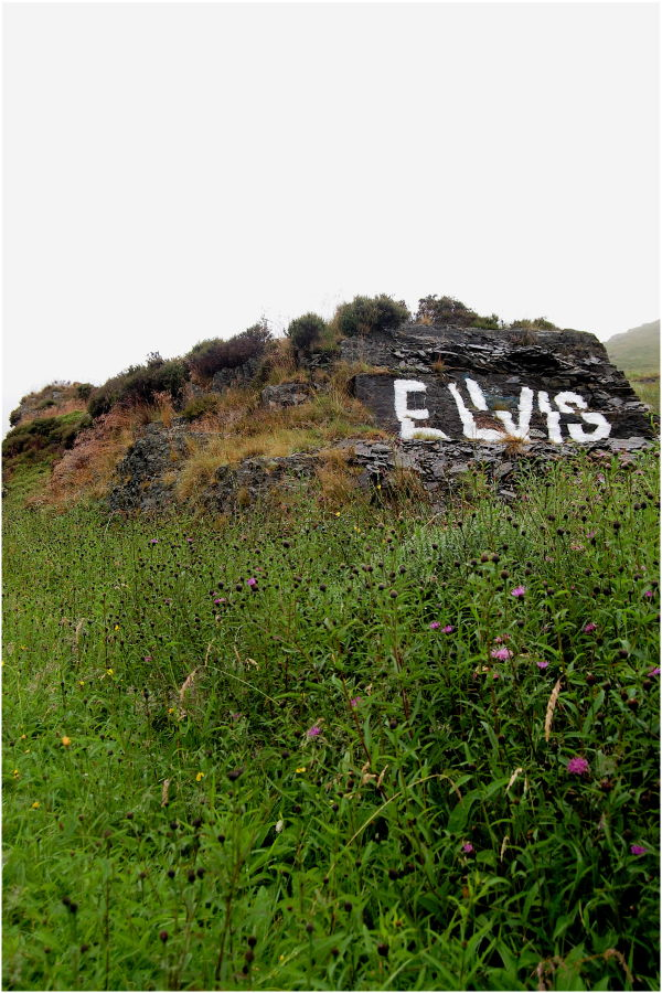 Elvis Lives! (in North Wales)