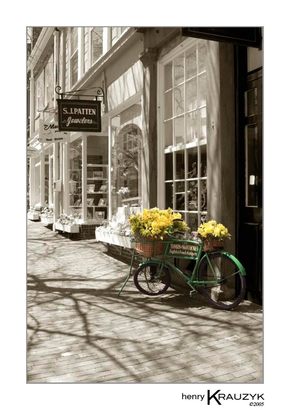 Bicycle with Flowers by Henry Krauzyk ©2006