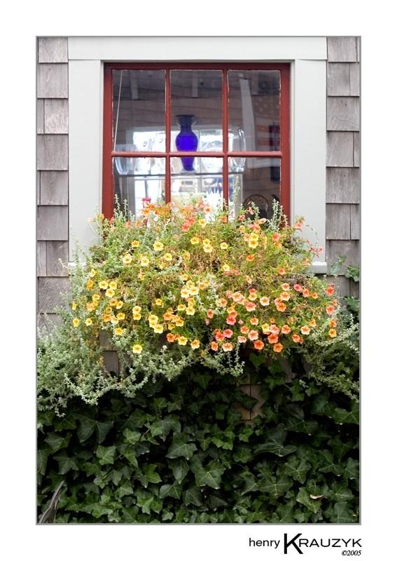 Nantucket Window Box by Henry Krauzyk ©2005
