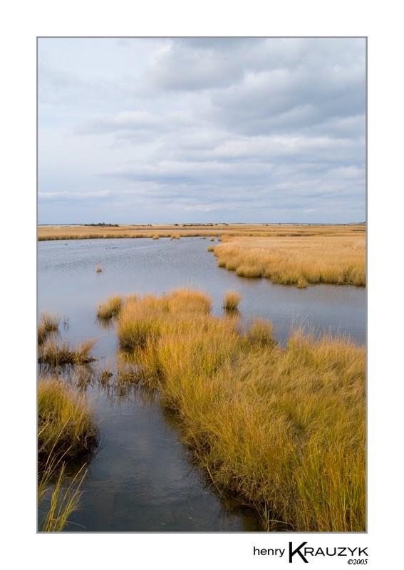 Folger's Marsh, Nantucket by Henry Krauzyk