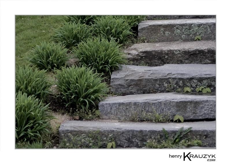 Five Steps by Henry Krauzyk©2008