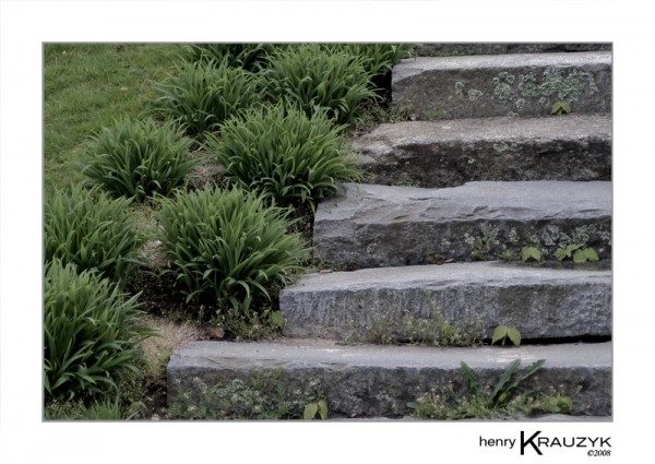Five Steps by Henry Krauzyk©2008