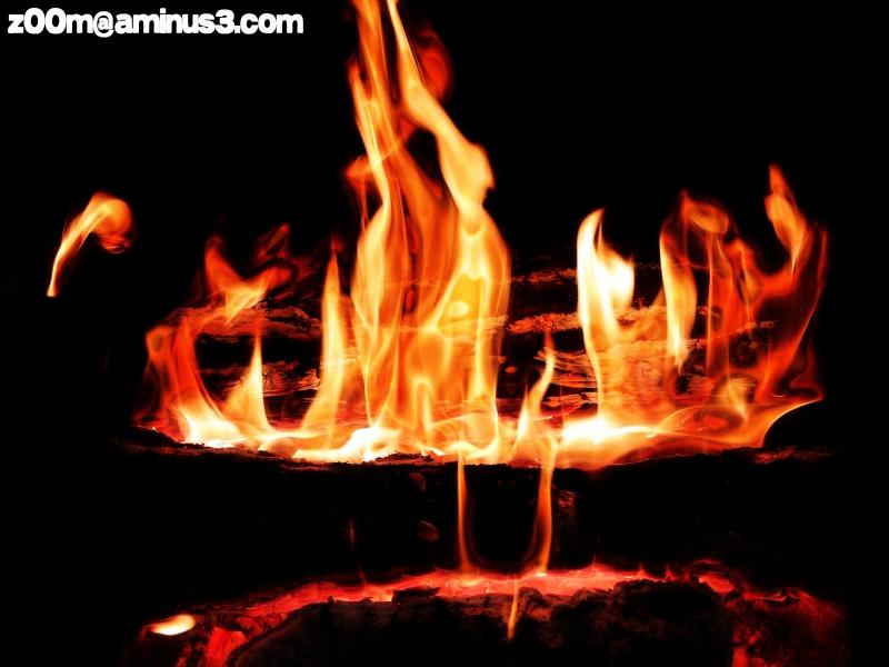 Tout Feu, Tout Flamme