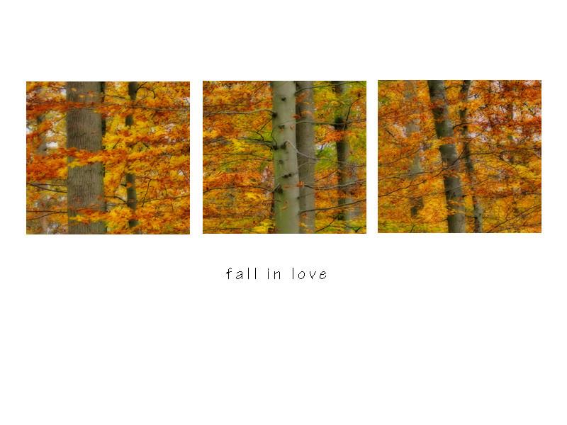 Fall... In Love