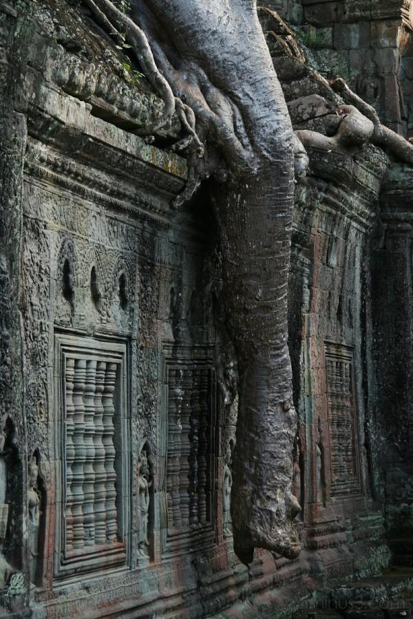 Temples at Angkor