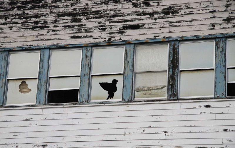Broken windows at Mare Island