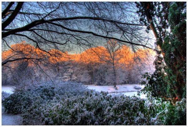More winter in Wilrijk