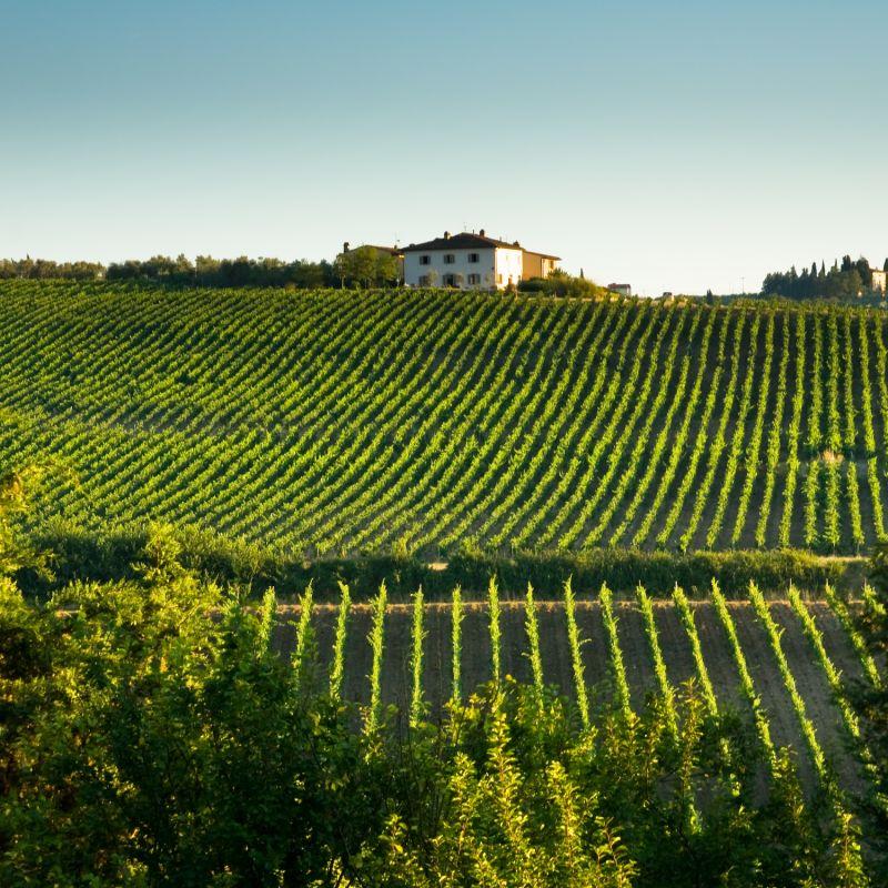 Toscana paessagio #6