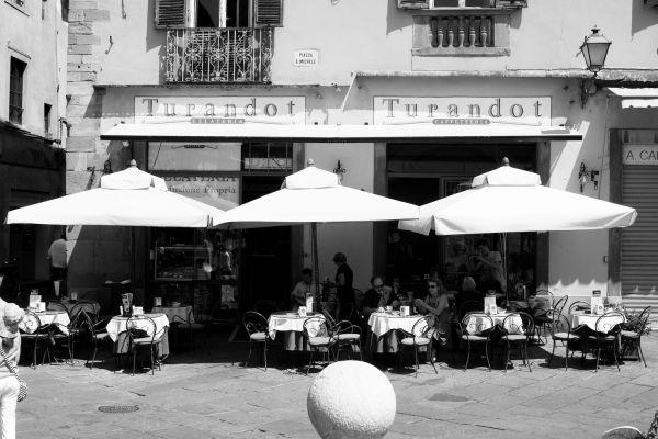 La vita in Toscana #19