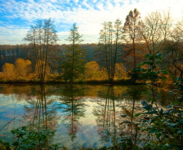 More autumn colours 1
