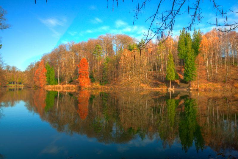 More autumn colours 2