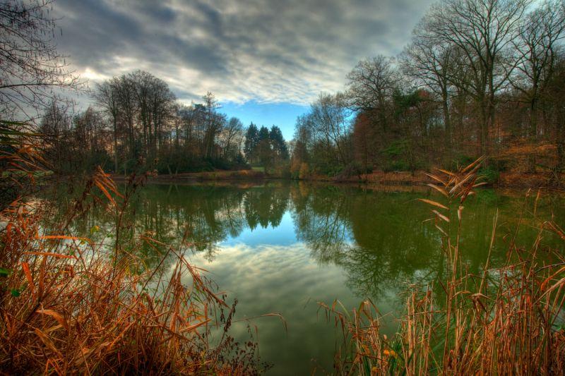 More autumn colours 12