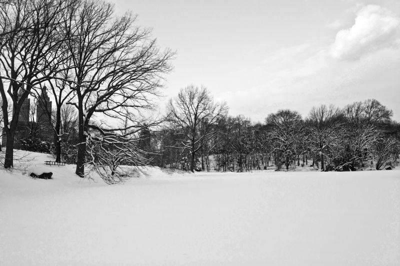 Snow Day [2]