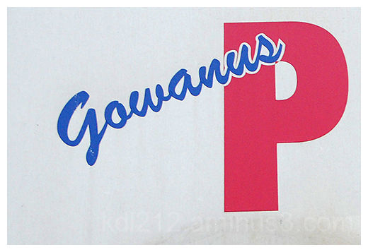 Gowanus 43